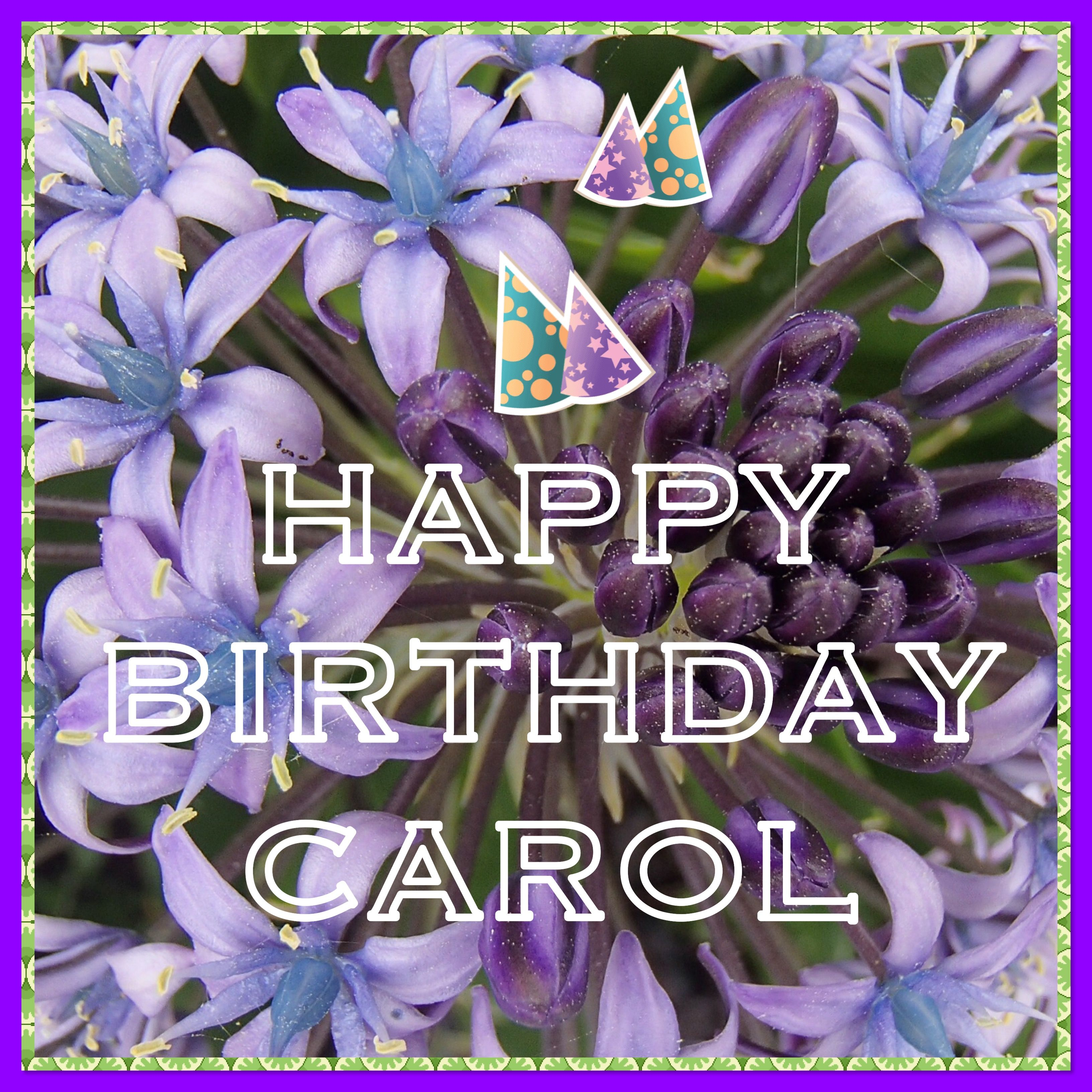 happy birthday carol happy birthday memes pinterest birthday memes happy birthday memes. Black Bedroom Furniture Sets. Home Design Ideas