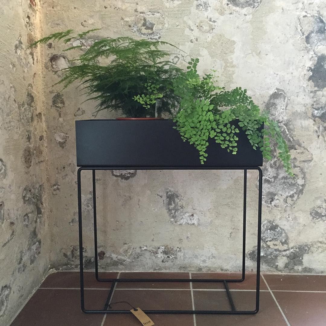 Binderiet Blomster Og Interior On Instagram Som Vi Har Gledet Oss Og Na Er Den Endelig Her Plant Box Fra Ferm Living Binde Blomster Planter Plante Potter