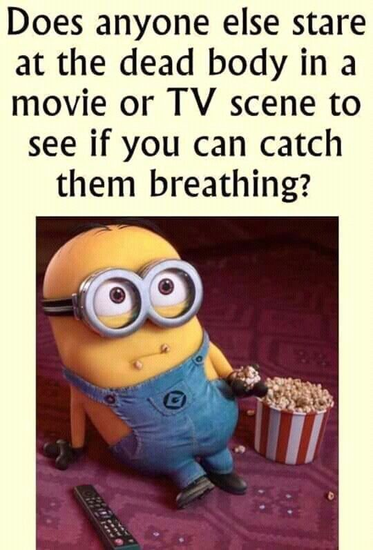 Hilarious Memes Humor Laughing 16 2 Funny Minion Memes Fun Quotes Funny Really Funny Memes