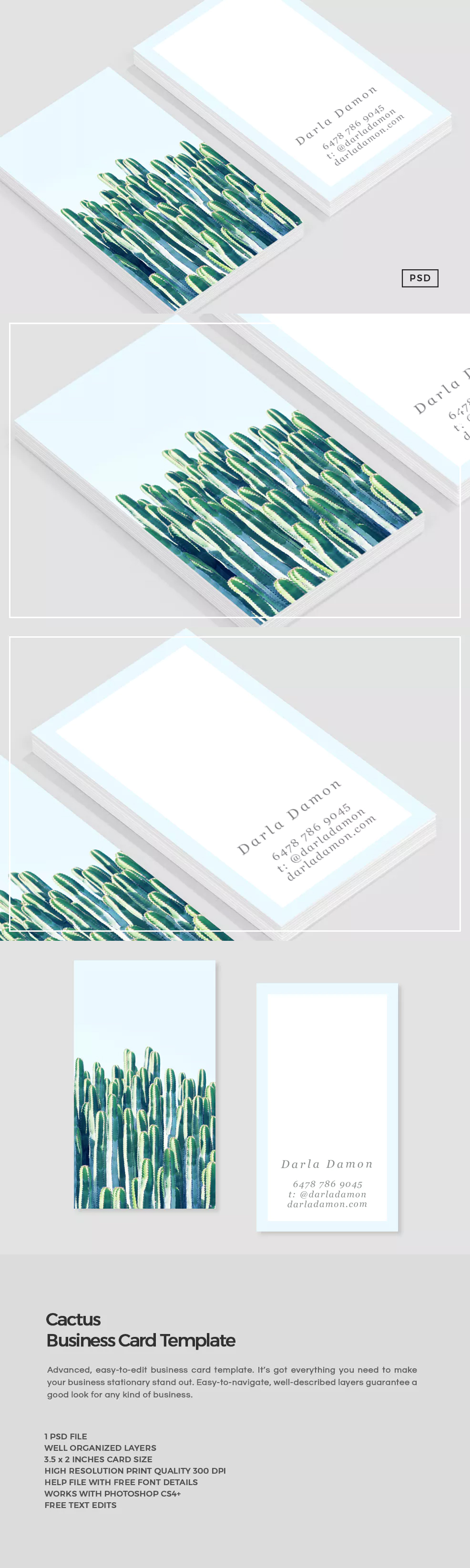 Cactus Business Card Template PSD | Business Card Inspiration ...