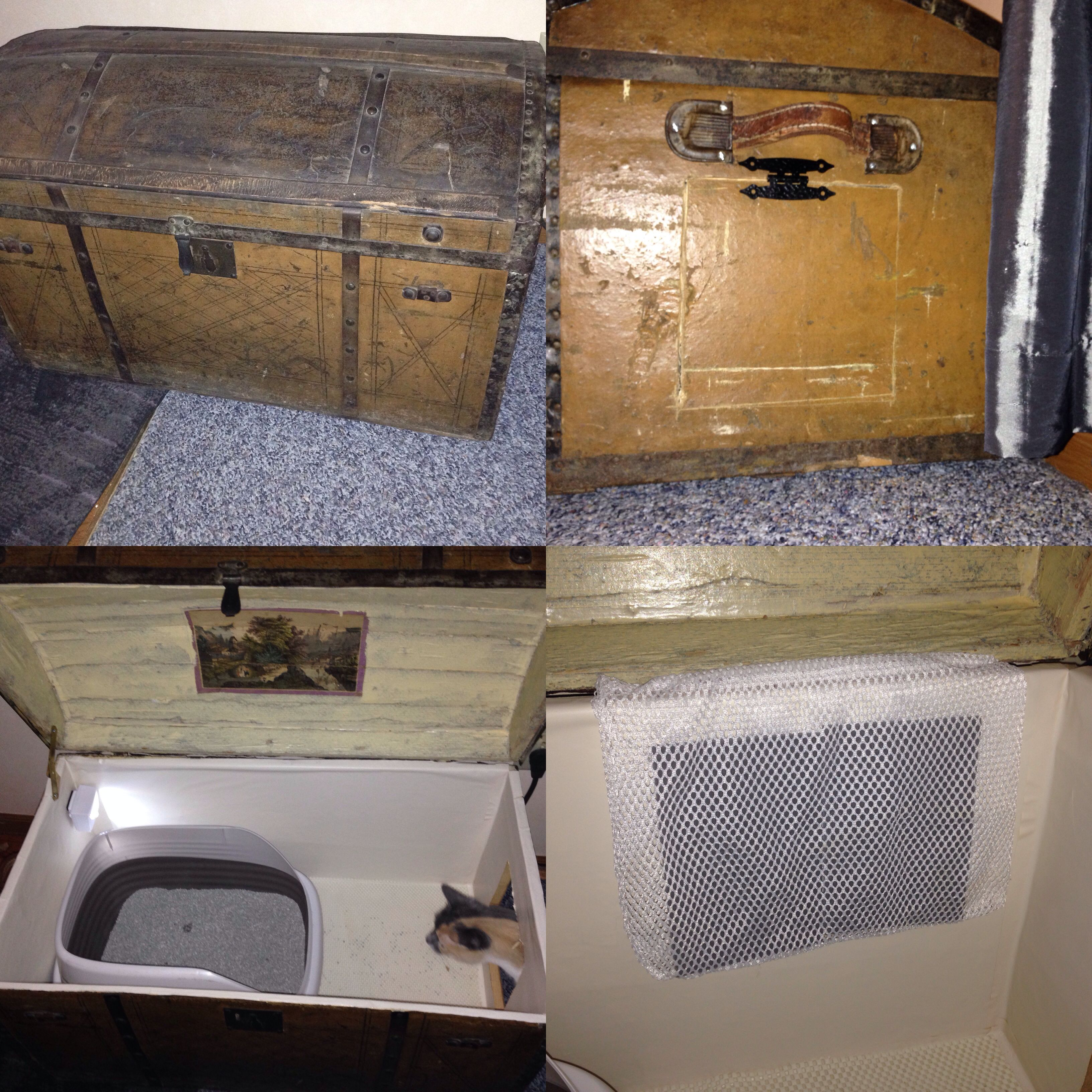 DIY hidden kitty box treasure chest trunk turned into lighted filtered spill proof & DIY hidden kitty box treasure chest trunk turned into lighted ... Aboutintivar.Com