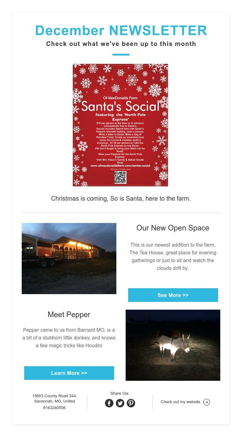 December NEWSLETTER Check out what we've been up to this