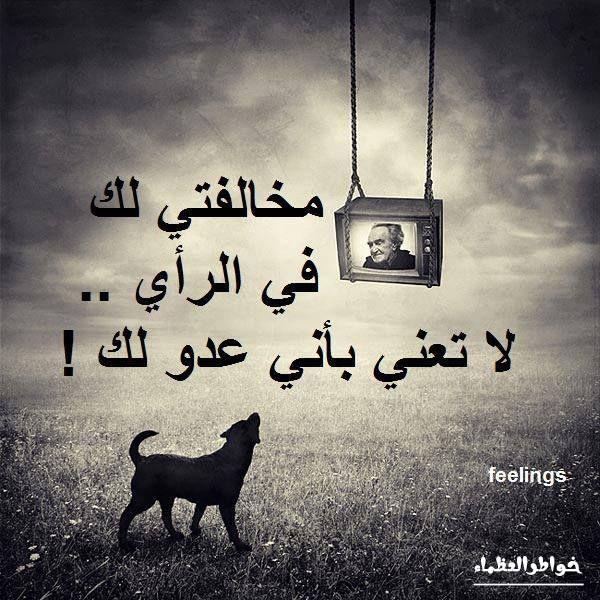 حب سلام وئام Cool Words True Words Arabic Quotes