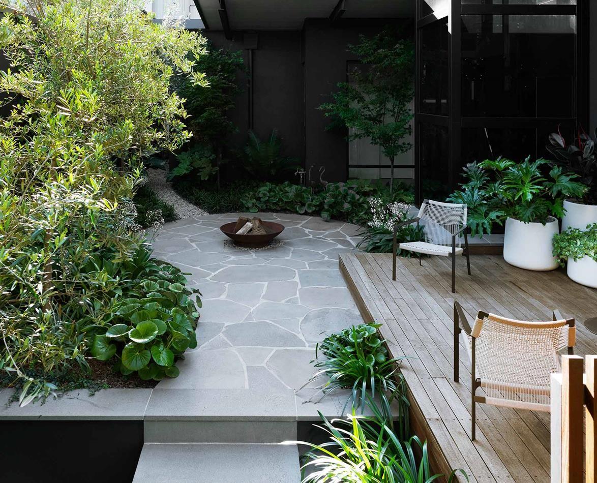A Coastal Desert Inspired Garden In Coogee Small Garden Landscape Small Garden Arbour Small City Garden