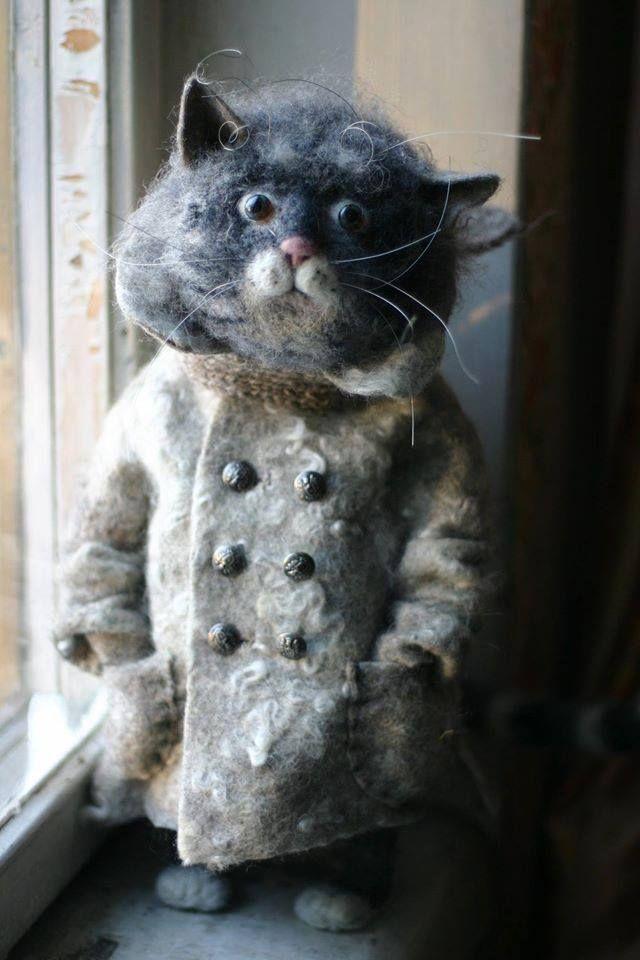 фото кошка в пальто офисе компании мне