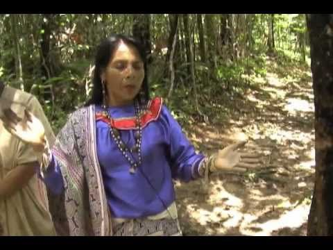 Amazon Experience, Shaman sings an Icaro for peace.