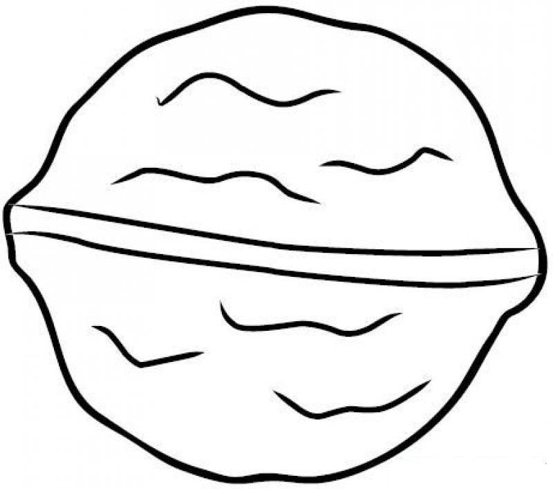 Шаблон для раскрашивания орехи