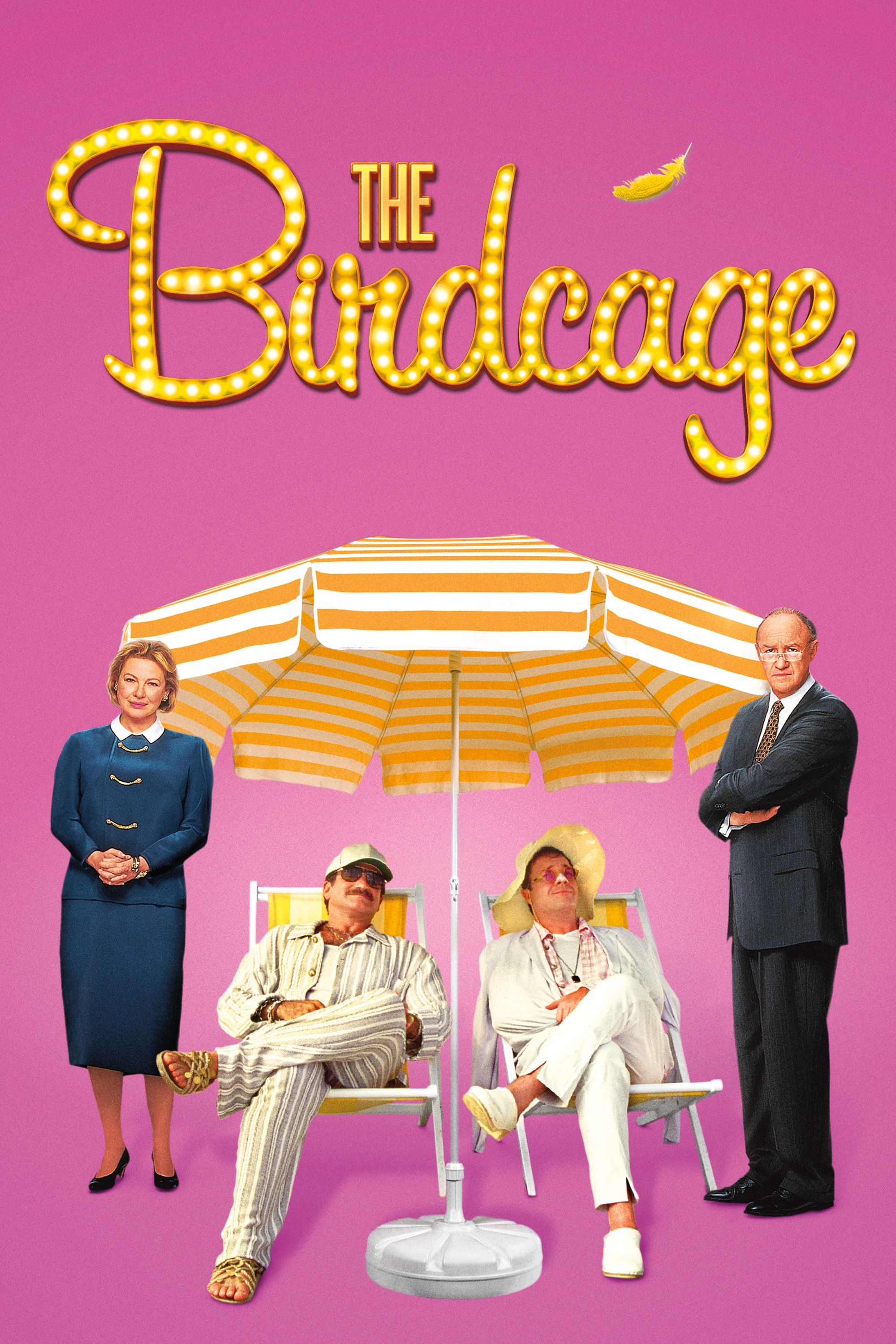 Buy the The Birdcage Movie Poster on Amazon (With images) | Robin ...