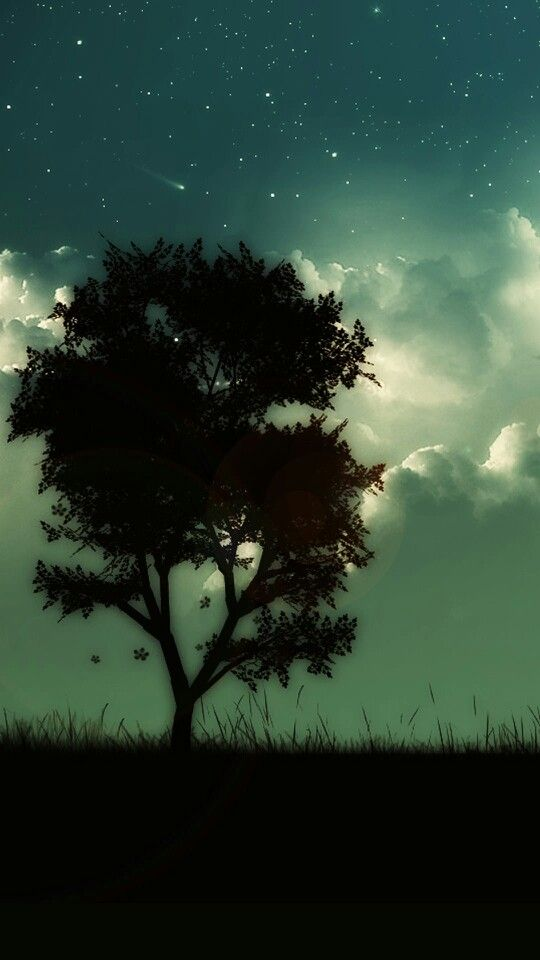 Lone Tree Night Black Green Cool Wallpapers For Phones Skyscape Dark Tree