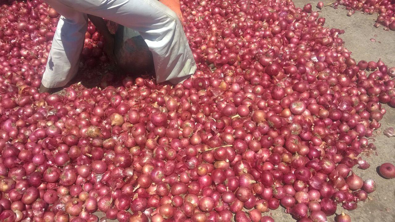 Pin by Arjun Foods on onion | Food, Vegetables, Fresh vegetables