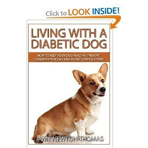 Living With A Diabetic Dog How To Keep Your Dog Healthy Prevent Common Problems And Avoid Complications Diabetic Dog Medication For Dogs Dogs