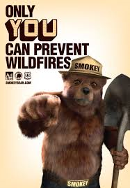 Content Wildfire Prevention Lessons From Smokey The Bear Smokey The Bears Bear Pictures Bear