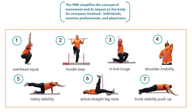 What is fms why does it matter the functional movement screen what is fms the functional movement screen part 1 fandeluxe Images