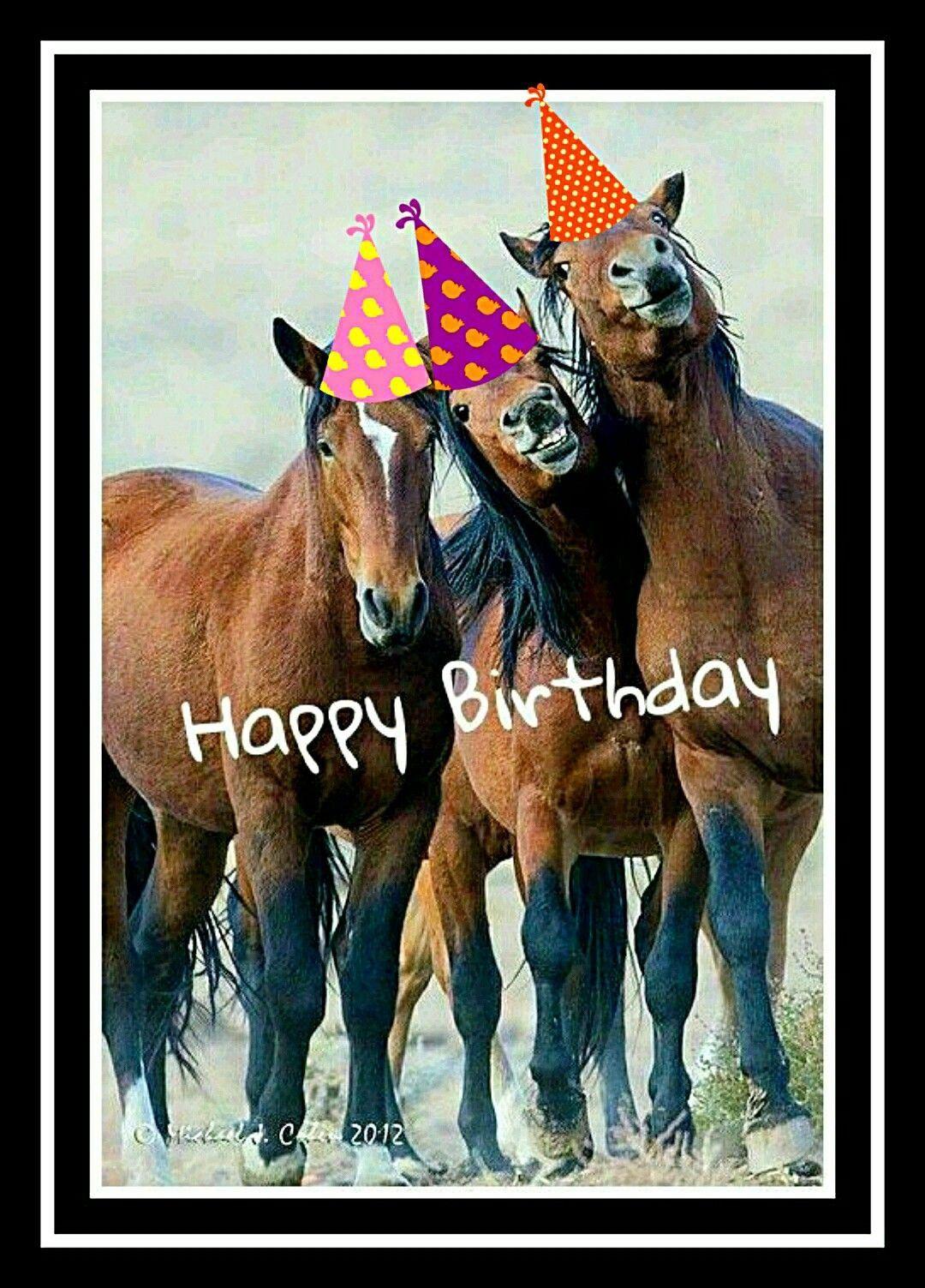 Geburtstagswunsche Pferde New Birthday Fun Geburtstag In 2020