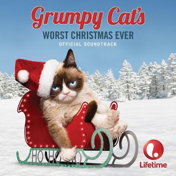 Holiday Pet Photos Gone Wrong | Grumpy Cat Nails It Again