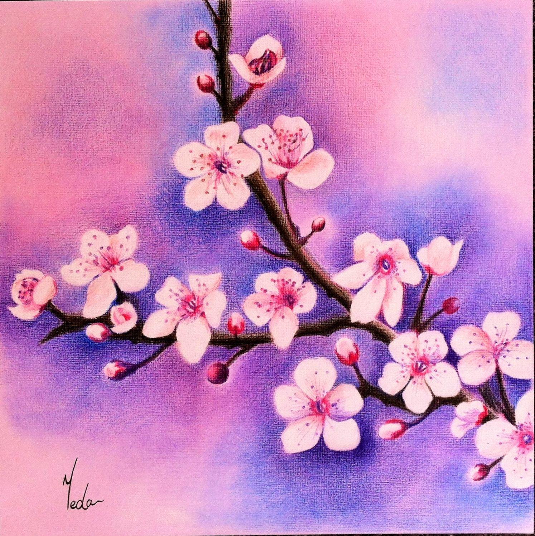 Cherry Blossoms Original Coloured Pencil Art Beautiful