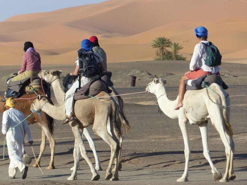 Morocco desert trips best sahara tours with