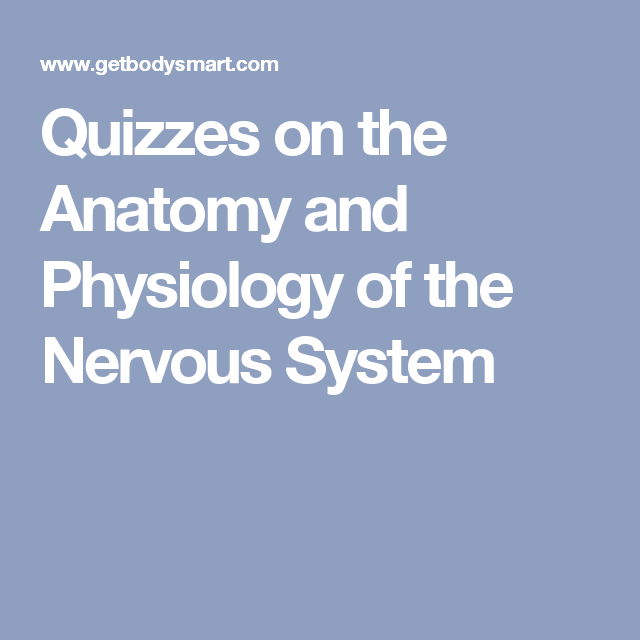 Quizzes on the Anatomy and Physiology of the Nervous System ...
