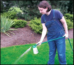 Jerry Baker America S Master Gardener Swing Into Spring Lawn Care