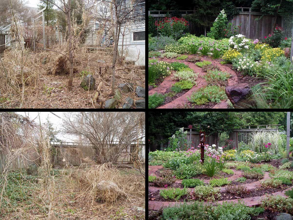 Verwilderter Garten Vorher Und Nachher Idee Garten Landschaftsbau Garten Neu Gestalten Bilder Von Landschaften