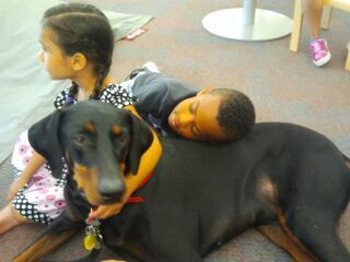 Working At The Dallas Public Library Therapy Dogs International