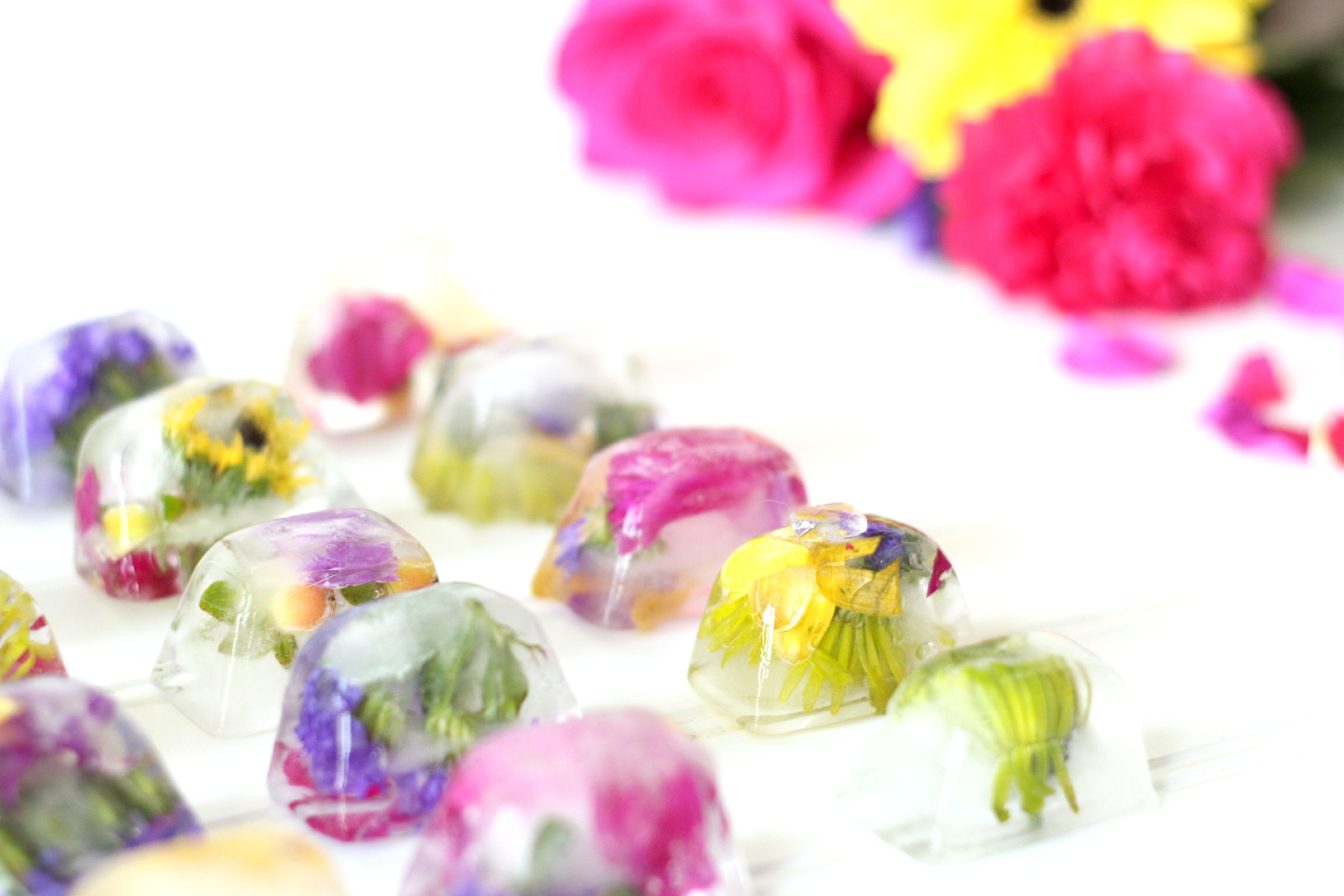 Flower Ice Cubes, Edible Flowers Uk