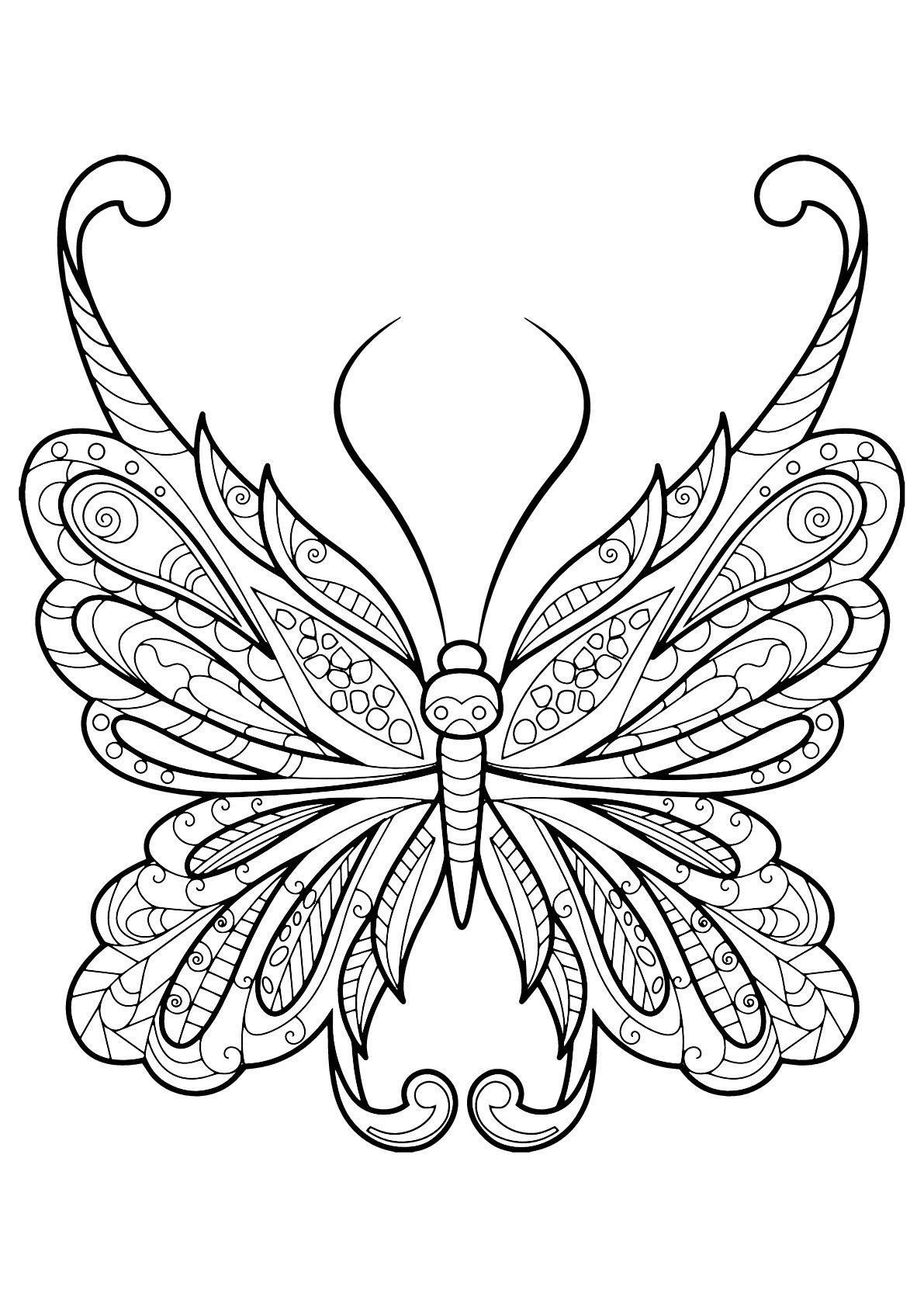 Pin On Draws [ 1684 x 1191 Pixel ]