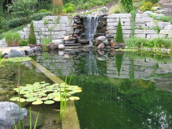 naturpool design Schwimmteich mini wasserfall seerosen pool