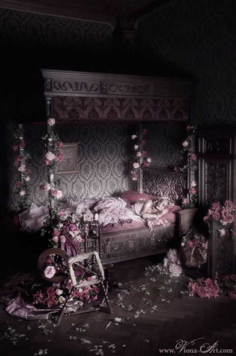 Fairytalemood Sleeping Beauty By Viona Art