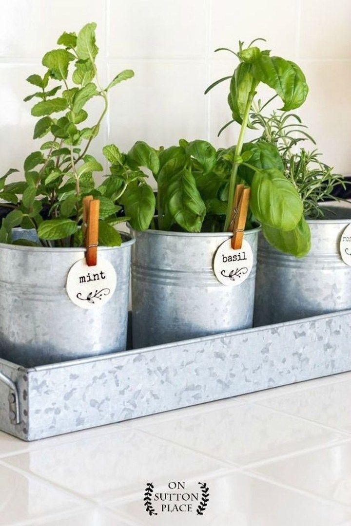 Adorable Indoor Garden Herb Diy Ideas 09 With Images 400 x 300