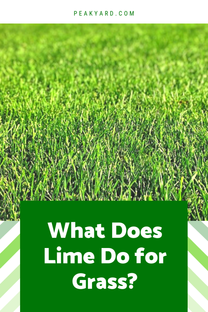 What Does Lime Do For Grass Lime For Lawns Lush Lawn Lawn Fertilizer
