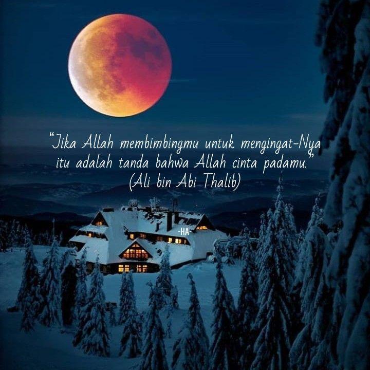 Kata Bijak Ali Bin Abi Thalib kata.kerja.site