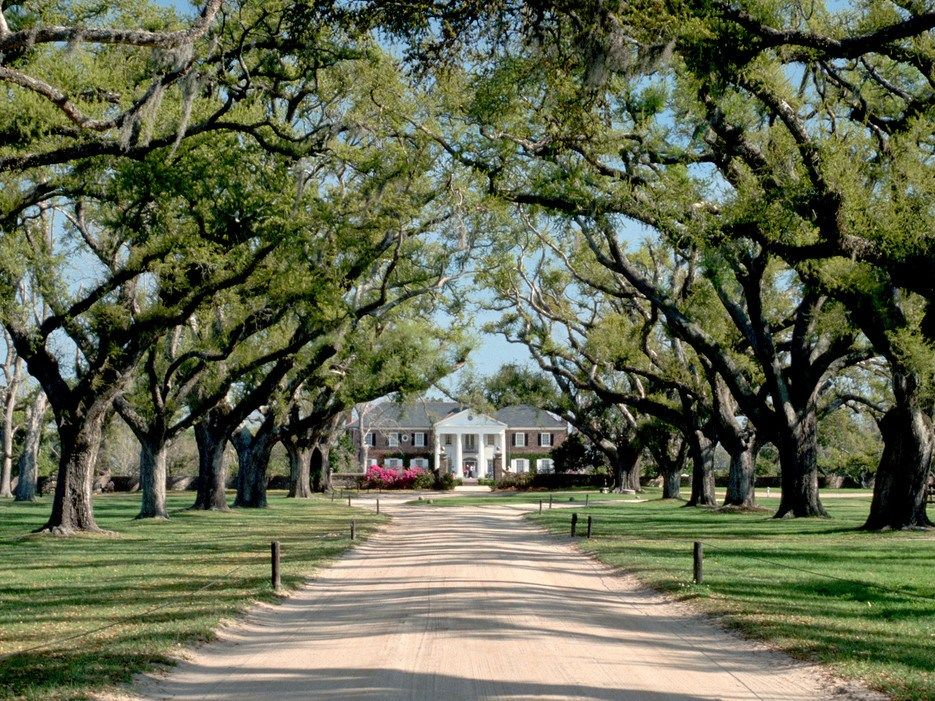 3b0284ce539a1d7a96239aecdacdda95 - Boone Hall Plantation & Gardens Charleston Sc