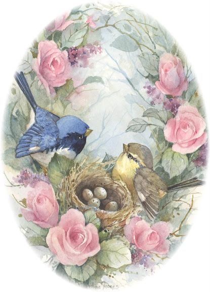 Beautiful birds and roses