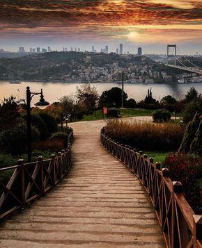 Otagtepe TEMA VakfI korusu - Istanbul // Photography by Onder Turkmen(onthere) • Instagram