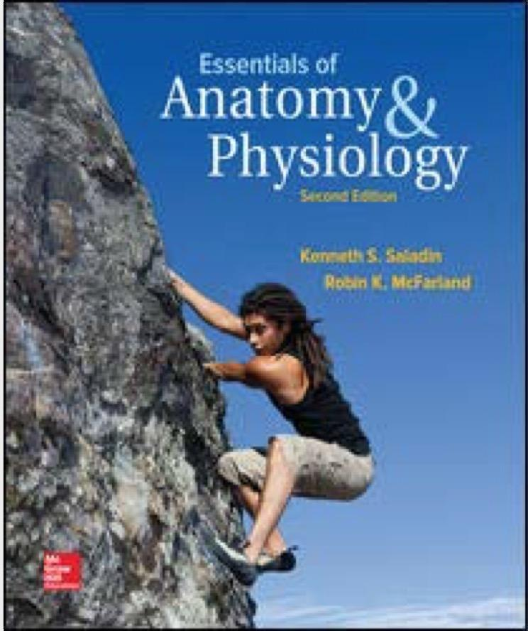 Essentials of Anatomy and Physiology 2nd Edition (Saladin) PDF ...