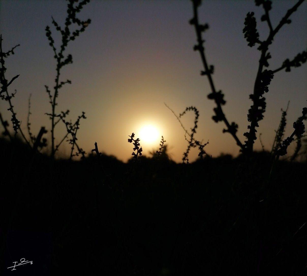 تصوير سلويت Celestial Sunset Celestial Bodies
