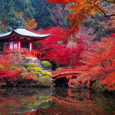 Daigo-ji Temple in Autumn - Kyoto, Japan