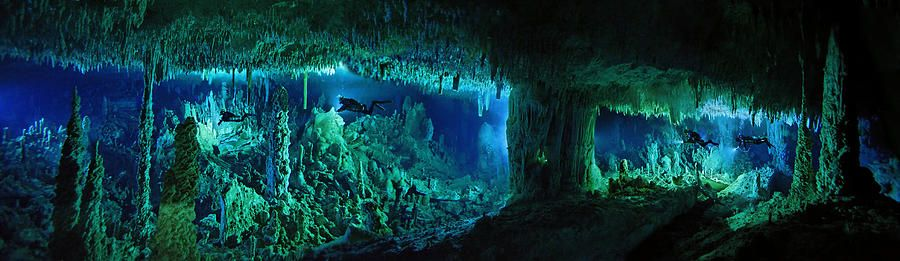 The Cascade Room by late National Geographic explorer Wes C. Skiles (images  shot at the Bahamas blue holes and combined i… | Underwater caves, Blue  hole, Underwater