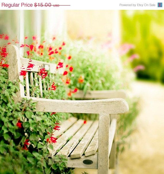 Outstanding A Spot In The Sun Autumn In The Garden Of Wonder Home Evergreenethics Interior Chair Design Evergreenethicsorg