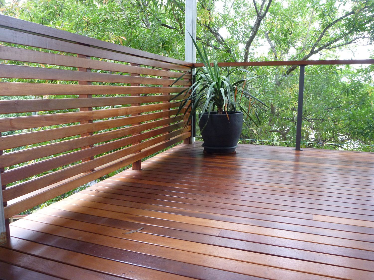 Timber screen meets glass with dressed hardwood handrail for Garden decking handrails