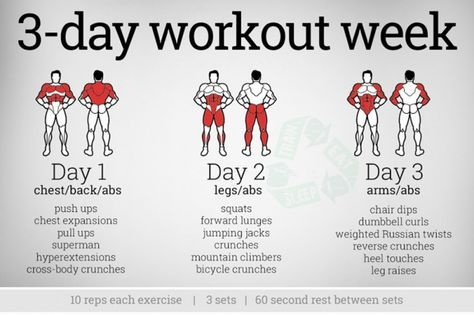 3 day workout week  chest abs legs arms full body fitness