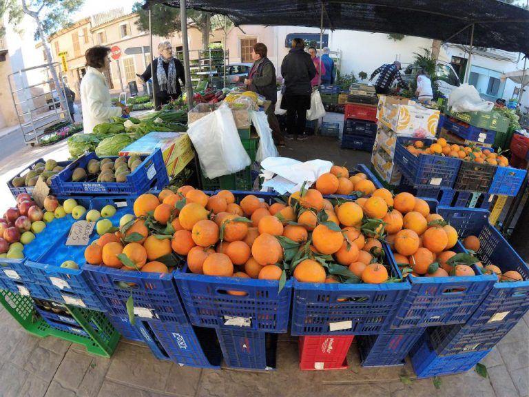 6 Besondere Markte Auf Mallorca Warten Auf Deinen Besuch Markte