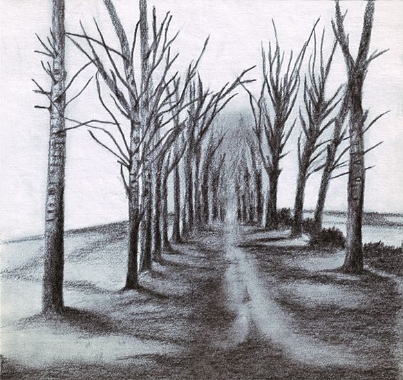 Sketch Of Trees Along A Road Perspective Landscape Drawings Cool Pencil Drawings Landscape