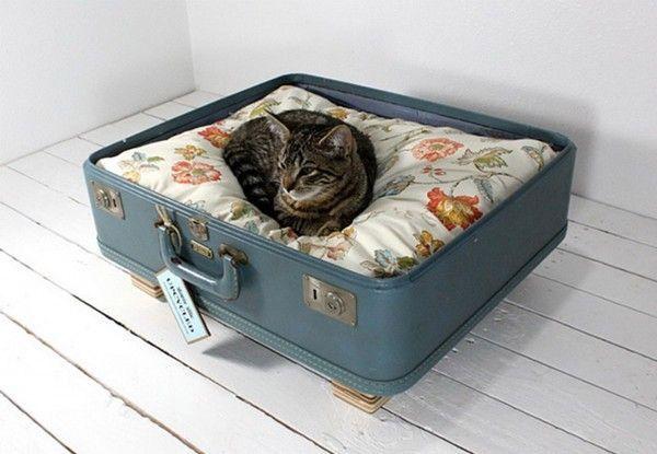 Cuccia valigia vintage <3