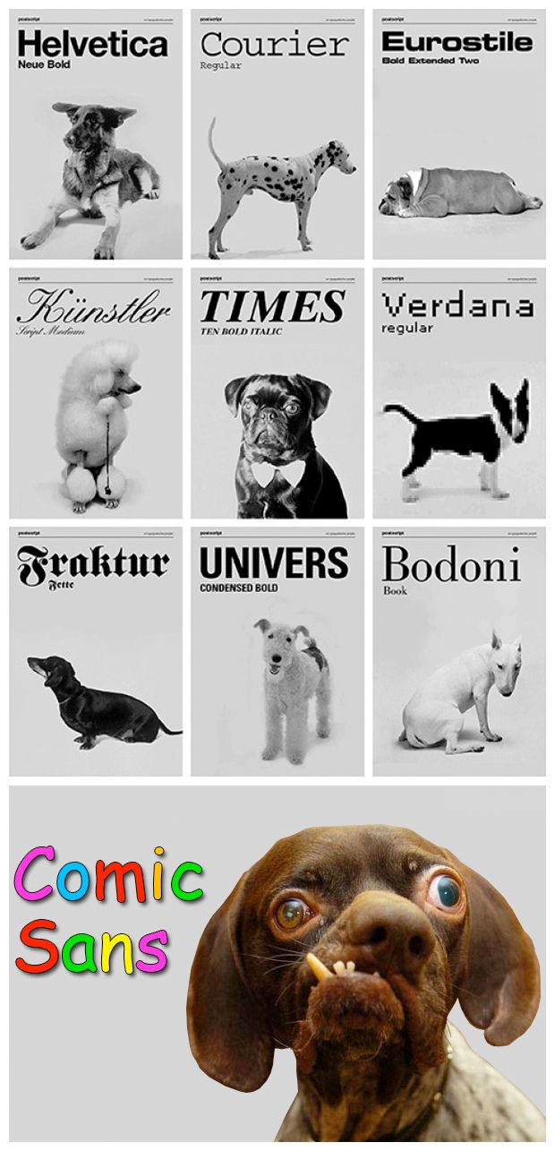 if fonts were dogs.... love this