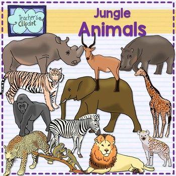 Jungle animals Clip Art (mammals) {Science clipart ...