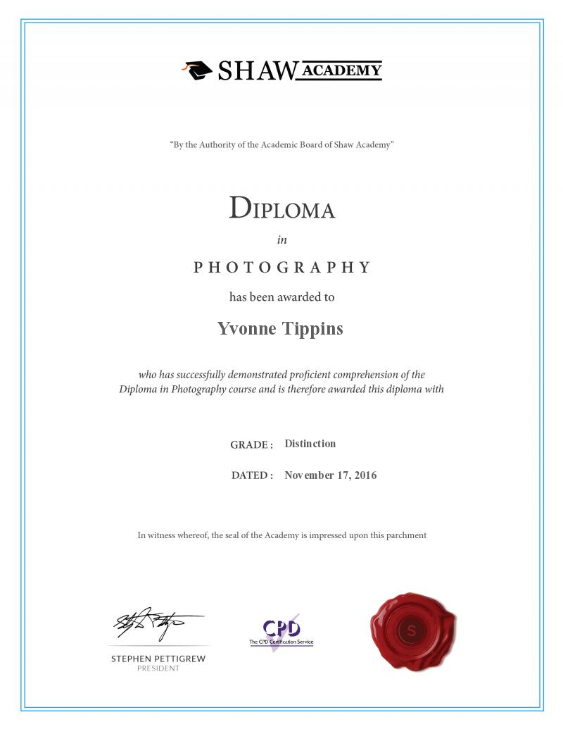 Shaw Academy Foundation In Photography Final Assignment Yvonne Tippins S Certificat Social Media Marketing Courses App Development Course Marketing Courses