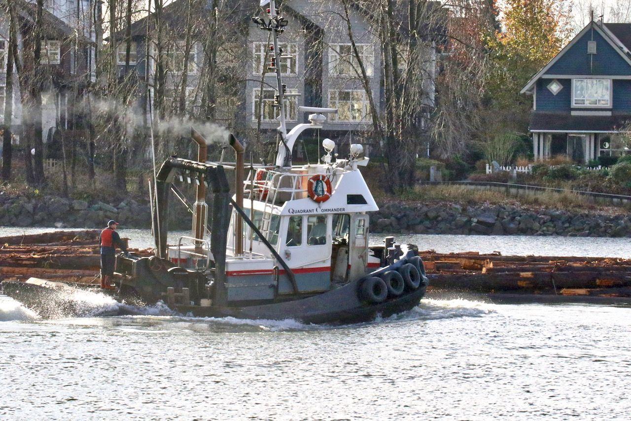 Quadrant Commander | Tug boats | Tug Boats, Fraser river, River