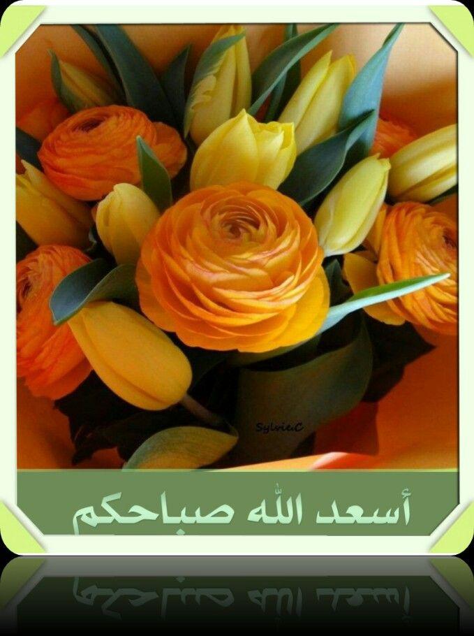 اسعد الله صباحكم Flowers Good Morning Home Gadgets